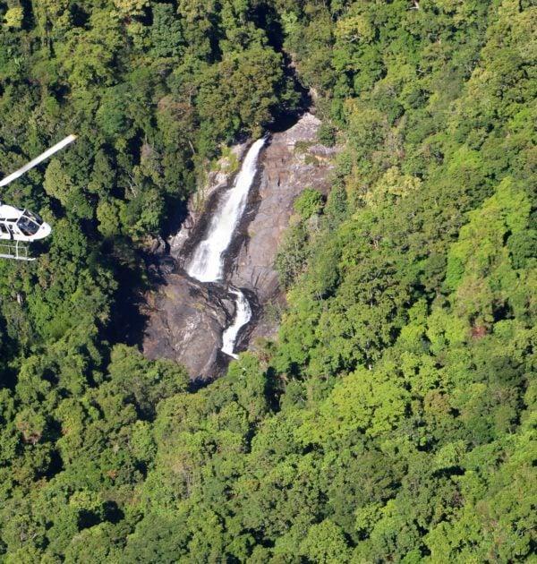 best daintree tours rainforest waterfalls mossman gorge port douglas four mile beach