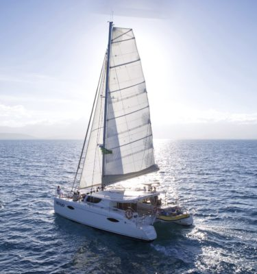 low island port douglas sailing snorkel great barrier reef turtles sand cay coral fish