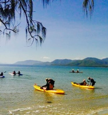 Kayaking Port Douglas to see turtles coral gardens stingrays fish