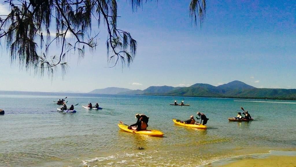Kayaking Port Douglas to see turtles coral gardens stingrays fish