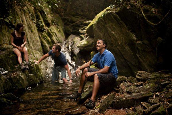 aboriginal cultural tours walkabout tours daintree rainforest kuku yalanji