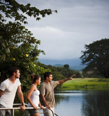 Amazing Daintree Tours that include the Daintree River