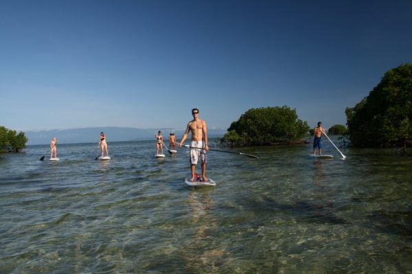 Windswell - Stand-Up Paddle Board 15