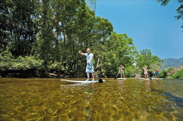 Best Daintree rainforest tours stand-up paddle board on Mossman River swimming with turtles