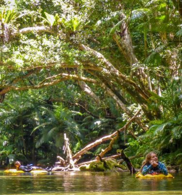 Snorkeling Port Douglas in the Daintree Rainforest along the Daintree River