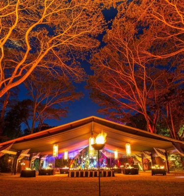 flames of the forest rainforest dining experience port douglas