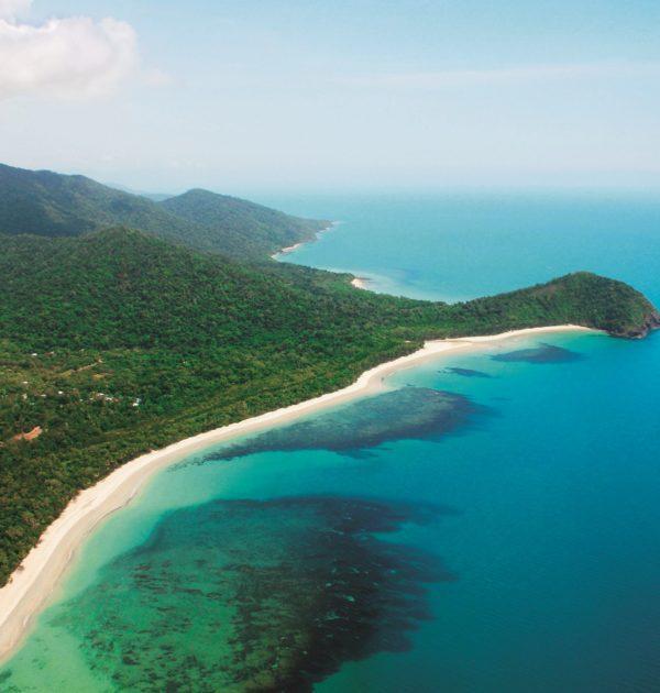 Magnificent Cape Tribulation Tours where the rainforest meets the reef