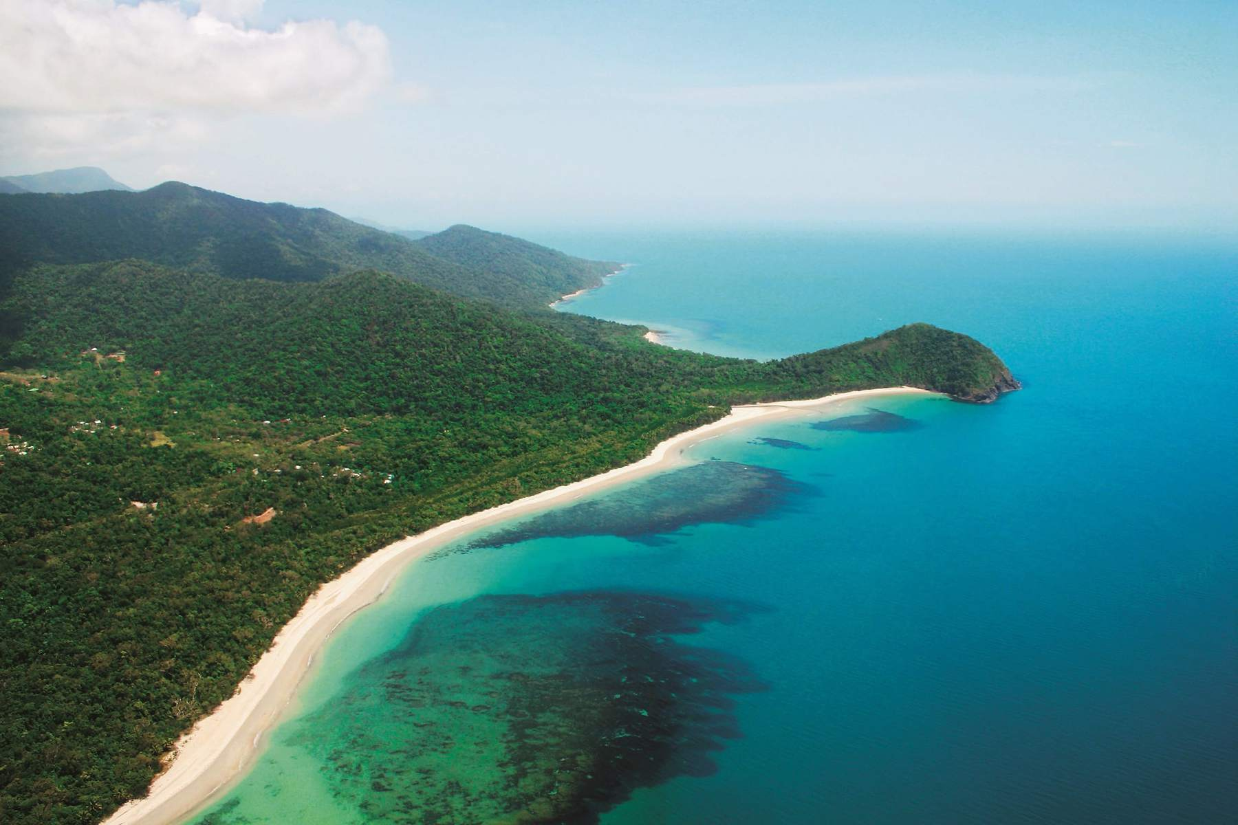 Magnificent Cape Tribulation Tours where the rainforest meets the reef