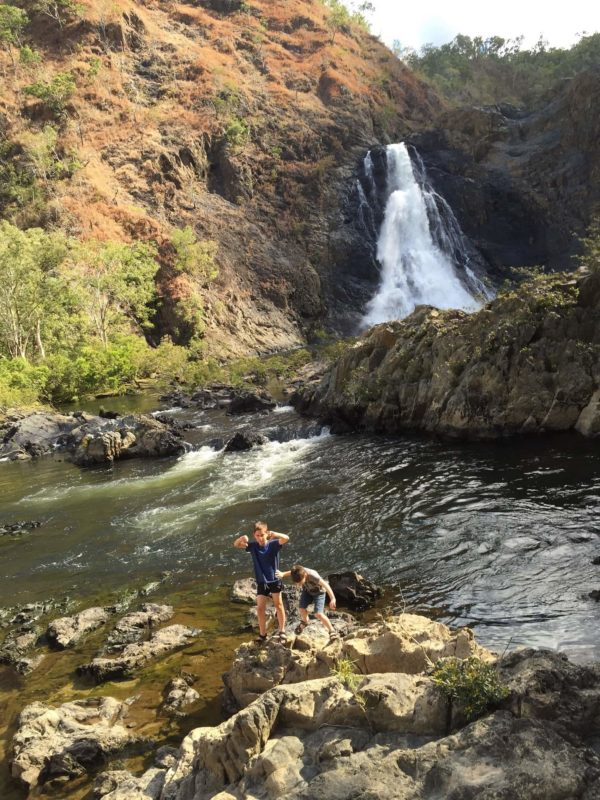 Explore the majestic Bloomfield Falls as you experience a four-wheel-drive adventure on the Bloomfield Track
