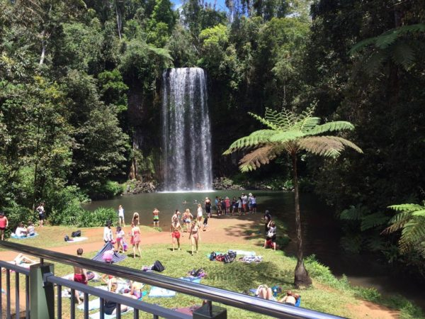 Paronella Park including exploring pristine waterfalls, Chillagoe Caves and Herberton Historical Village