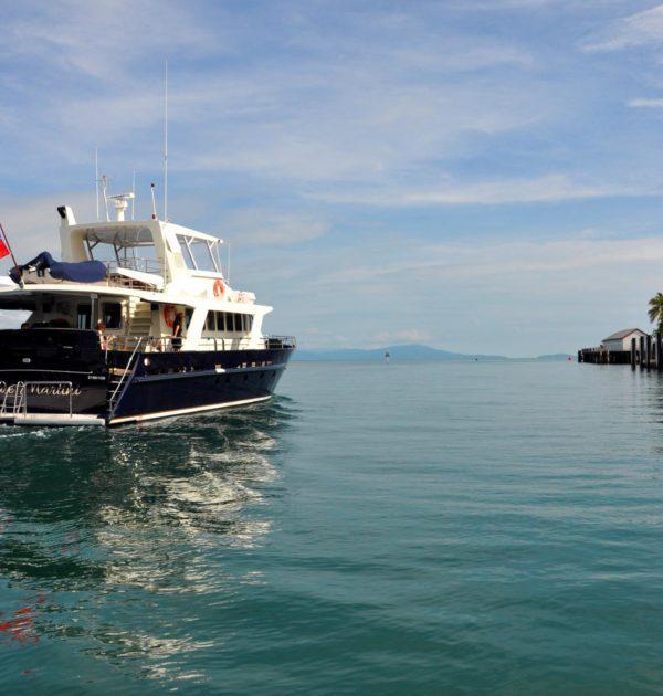 Port Douglas boat charter great barrier reef snorkel dive