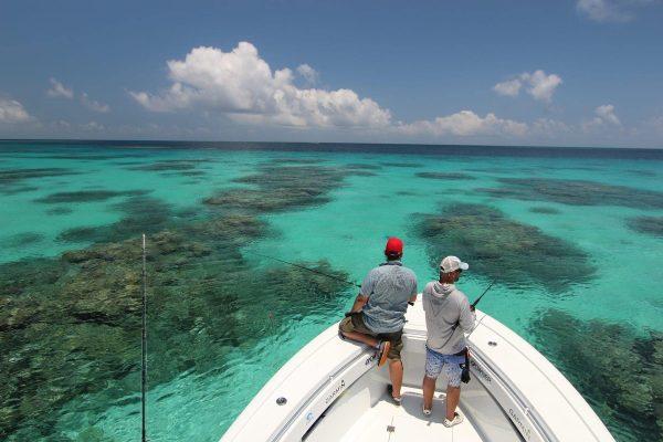 great barrier reef fishing port douglas
