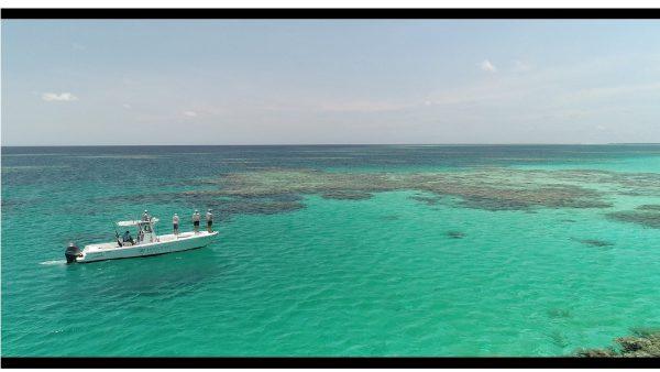 fishing tours port douglas great barrier reef